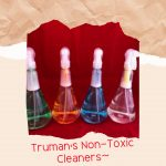 Truman's Non-Toxic Cleansers, cleaners, clean home