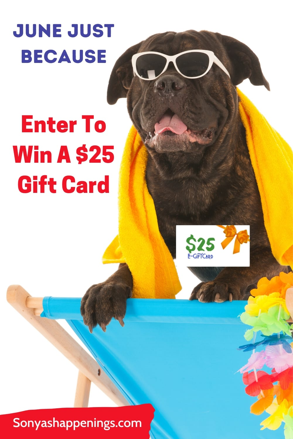 $25 June just because giveaway~ ends 6-23