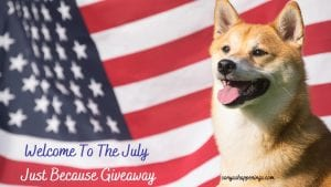 july just because giveaway, win a $25 gift card