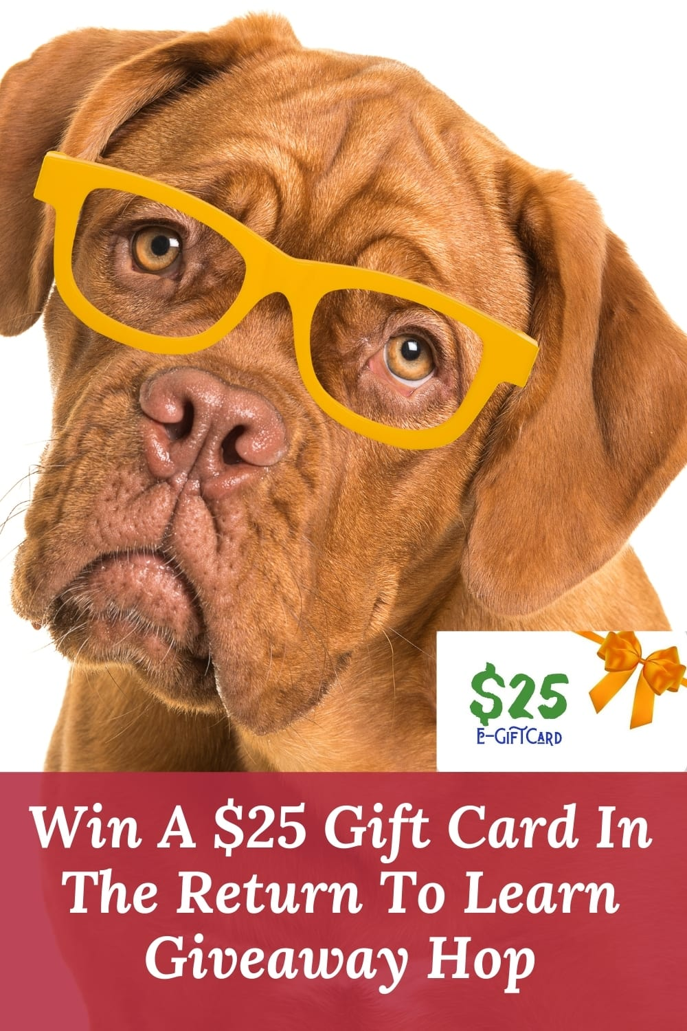 $25 giftcard ~ win it in the return to learn giveaway hop ~ ends 8-18