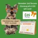 $25 November Just Because Gift Card Giveaway
