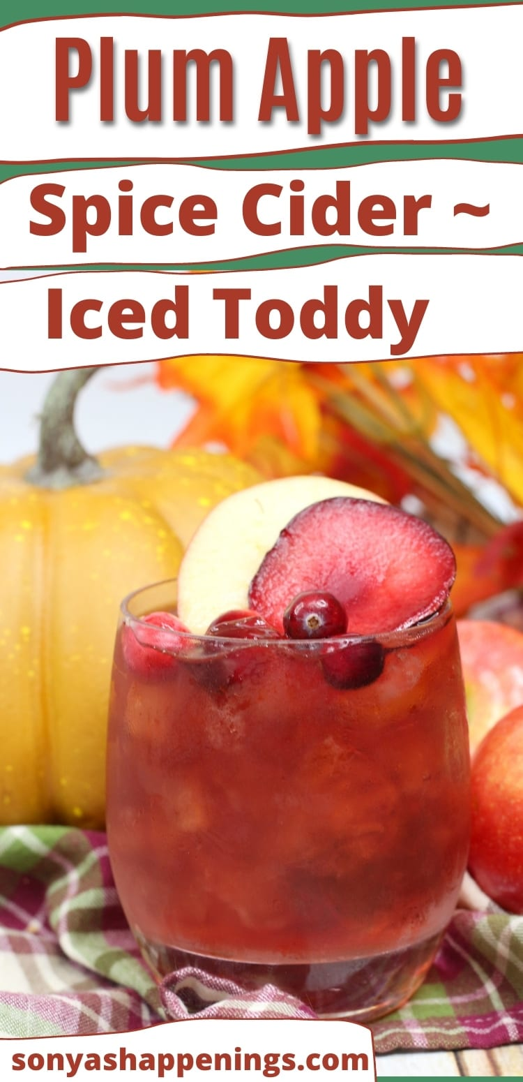 Plum apple spice cider ~ YUMMY cold toddy!