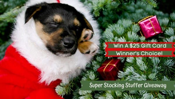 $25 Super Stocking Stuffer