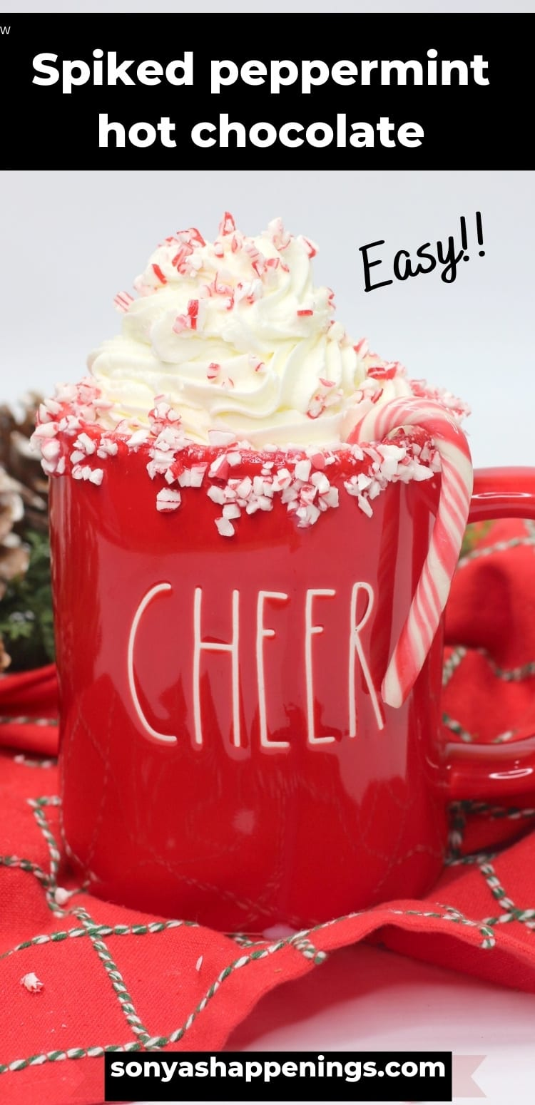Spiked peppermint hot chocolate ~