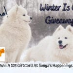 Win $25 GiftCard #WinterIsComing