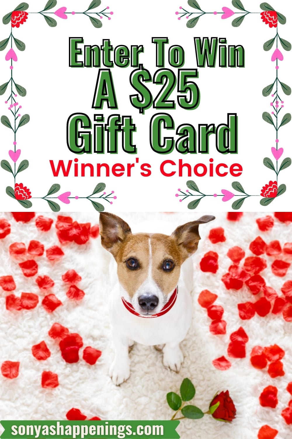 Win $25 in the February Just Because Giveaway ~ ends 2-23