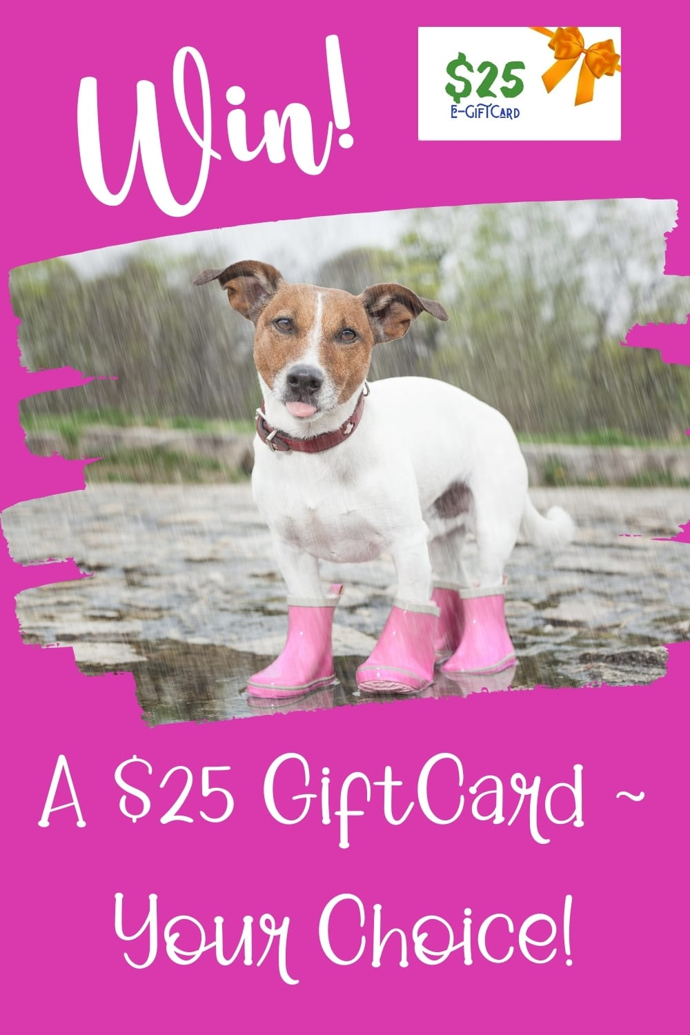 $25 giftcard giveaway ~ April Just Because ends 4-28