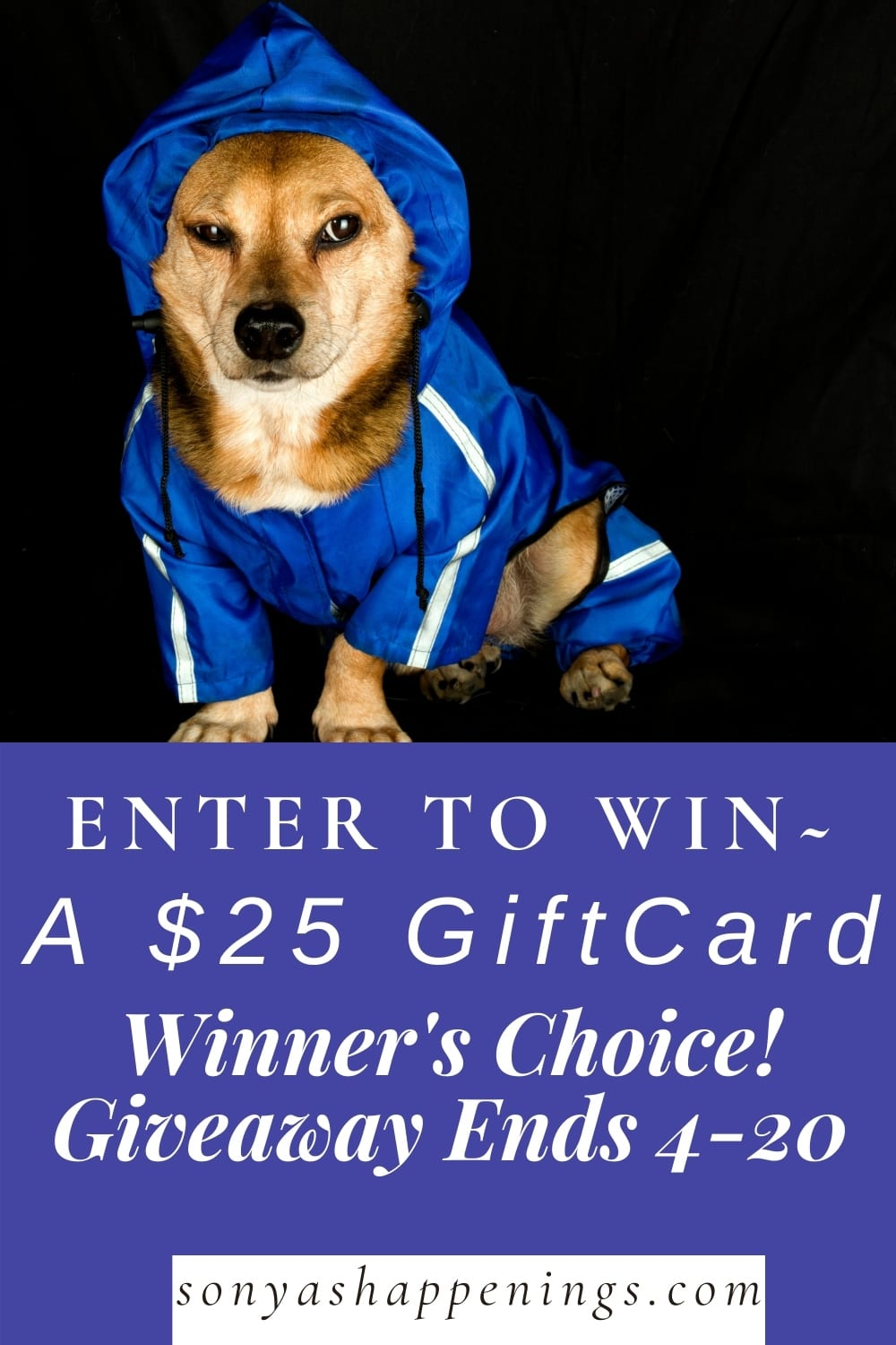 April Showers $25 GiftCard Giveaway ~ Ends 4-20-21