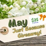 $25 May Just Because Giveaway