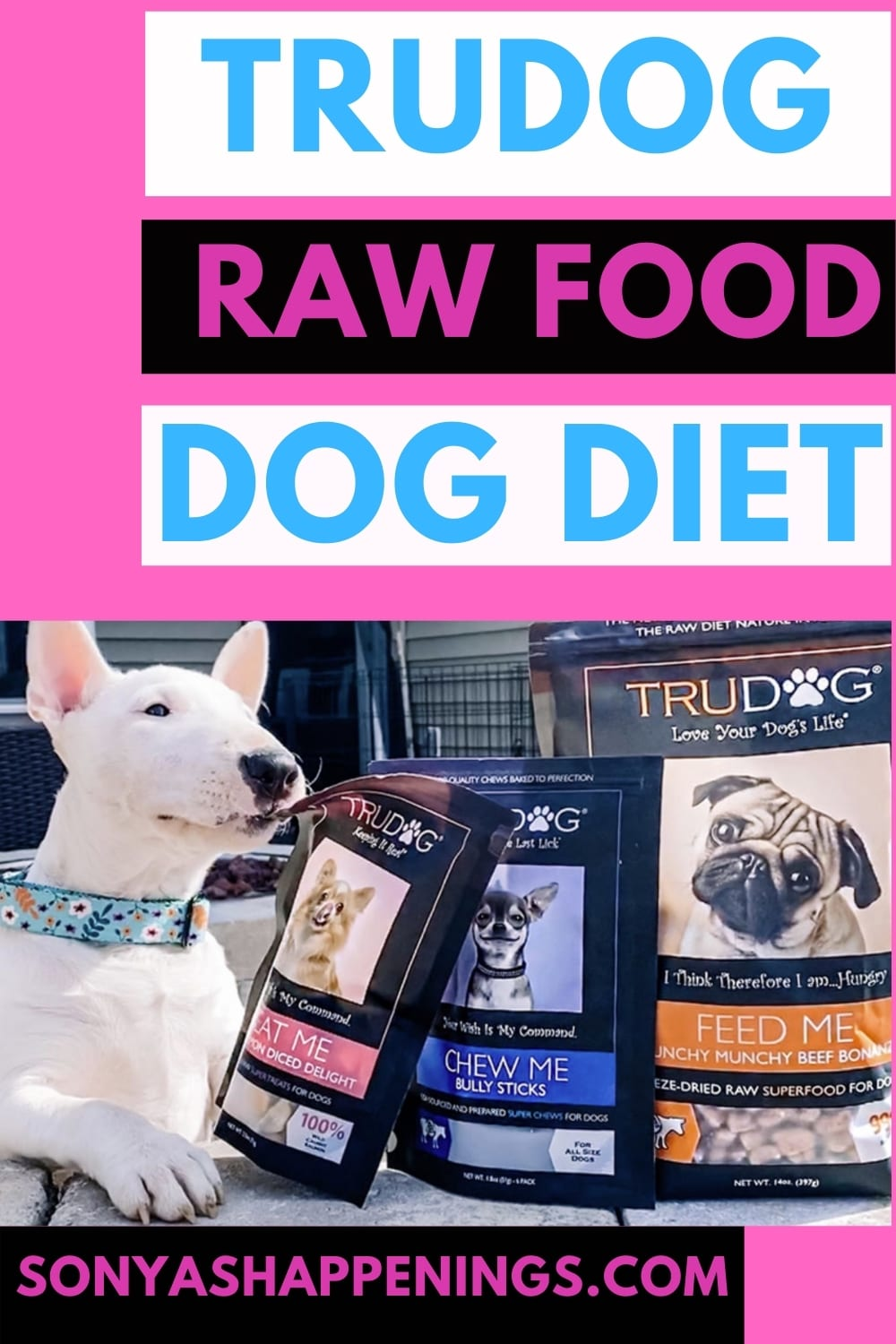 Have You Thought About Feeding Your Dog A Raw Diet? Check Out Trudog! #Rawgust