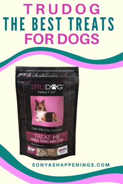 The best treats for dogs