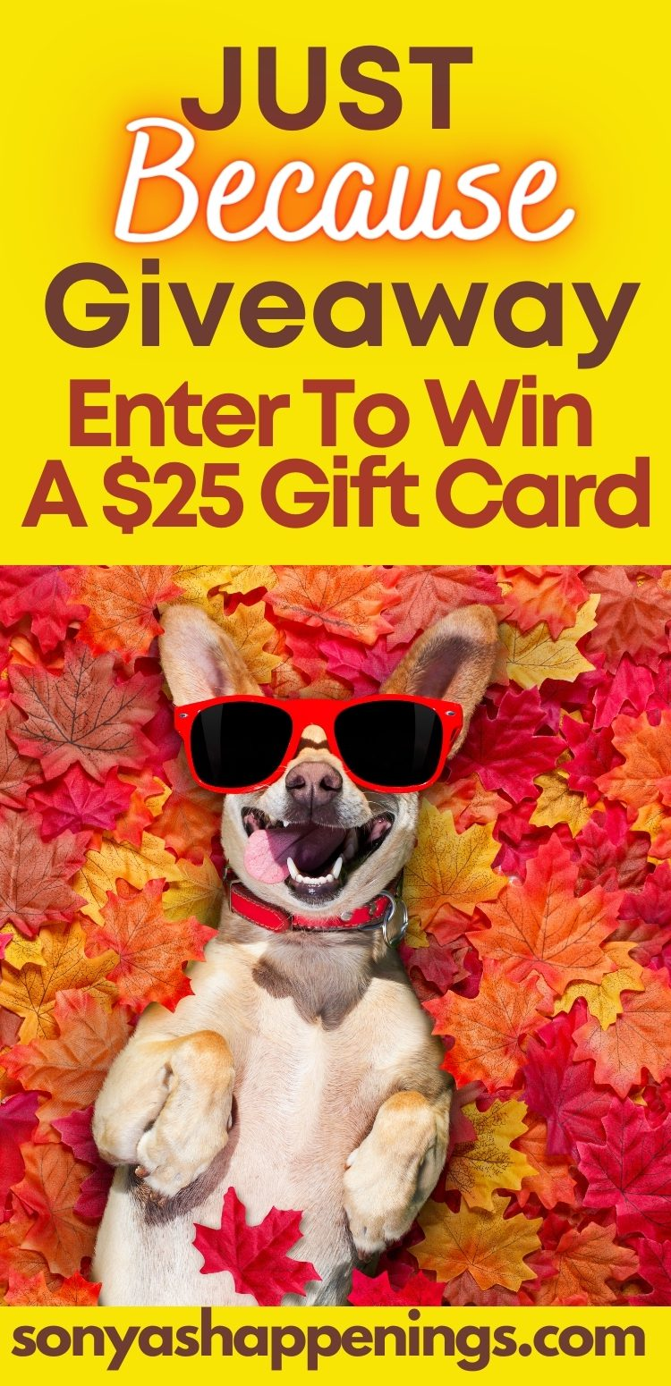 $25 Just Because Giveaway ~ Ends 10-15